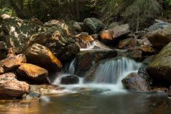 Ardennes - Brook