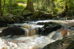 River Roer near Monschau
