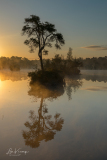 Sunrise Oisterwijkse vennen [Explore]