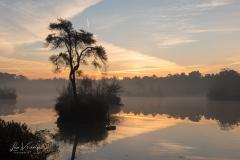Sunrise Oisterwijkse vennen